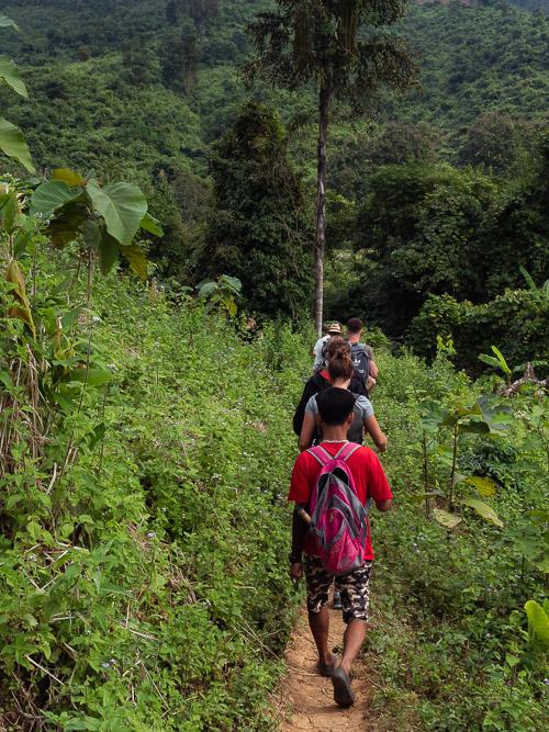 Walking through beautiful Laos jungle with Tiger Trail in Nong Khiaw, Laos
