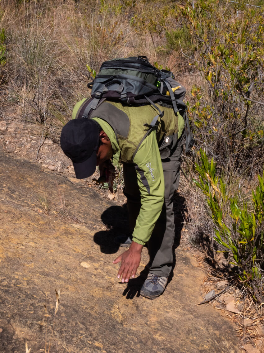 A guide bends down to explain fossilised footprints in Torotoro National Park, Bolivia