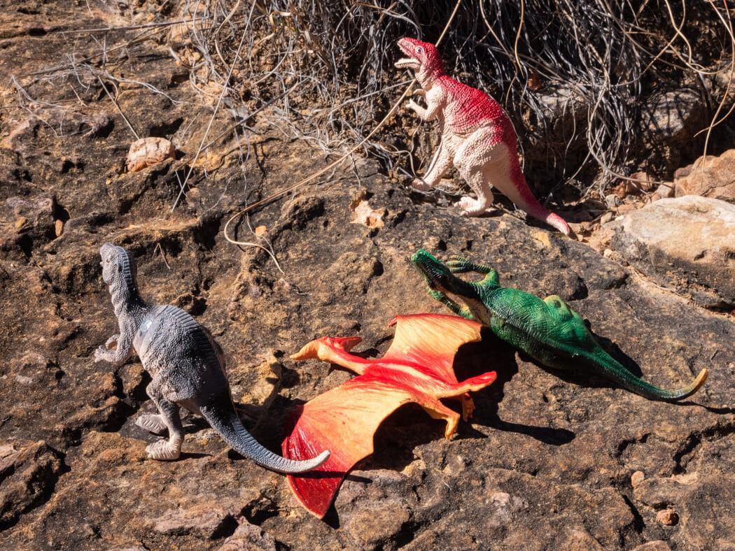 Toy dinosaurs on the ground next to fossilised dinosaur footprints, El Vergel tour, Torotoro National Park, Bolivia