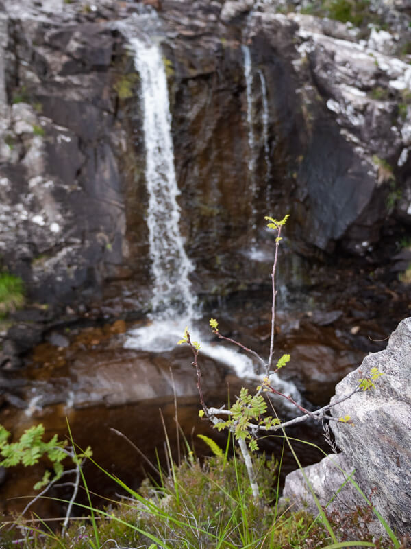 A flow with a waterfall in the background on Ben Hope