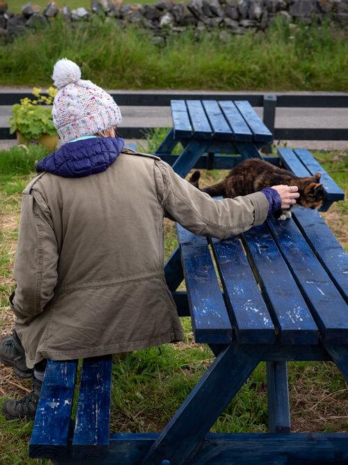 A girl petting a cat on a blue bench, Balnakeil, Scotland