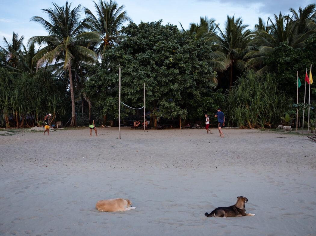 Staff on Sugar Beach play volleyball when the sun goes down, Sugar Beach