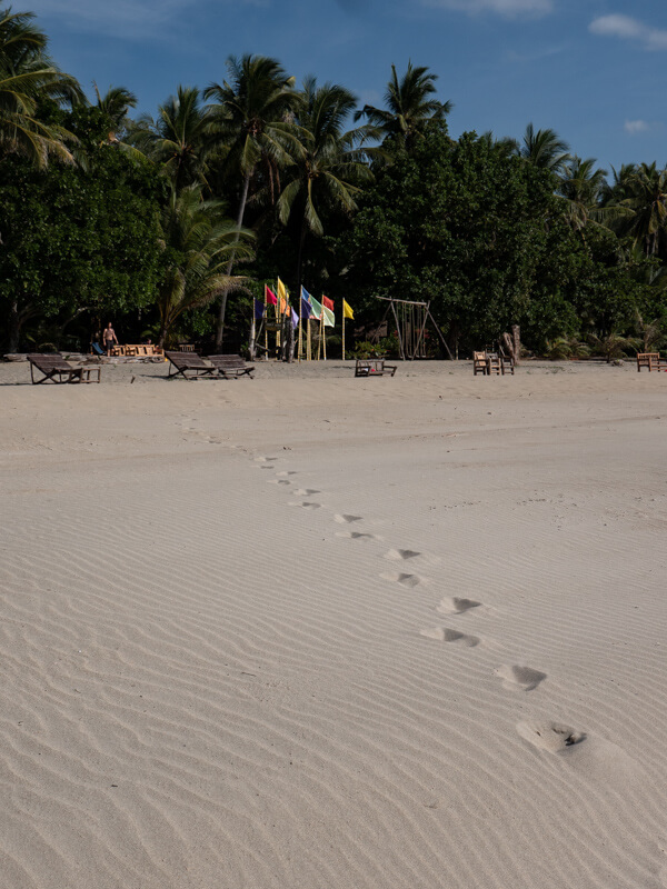 Footsteps in the sand lead to palm trees on Sugar Beach