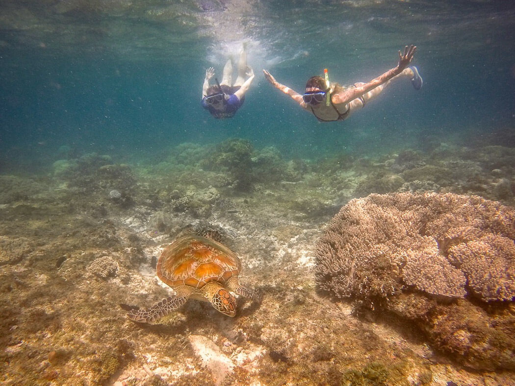 Two girls snorkel with a turtle in shallow water. 3 Weeks Philippines Itinerary